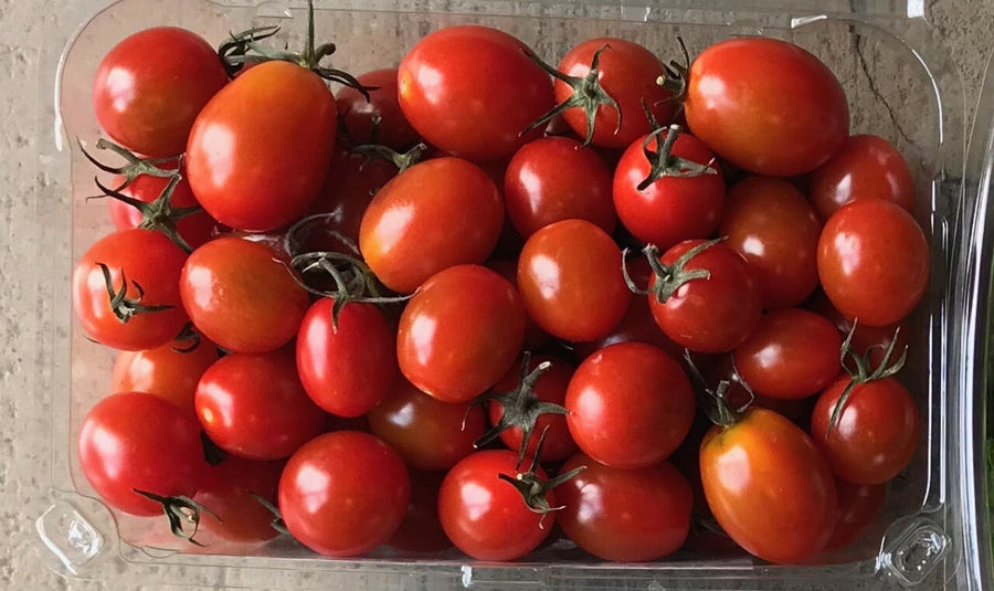 Cherry Tomatoes  - Organic - 1lb Clamshell - LOCAL
