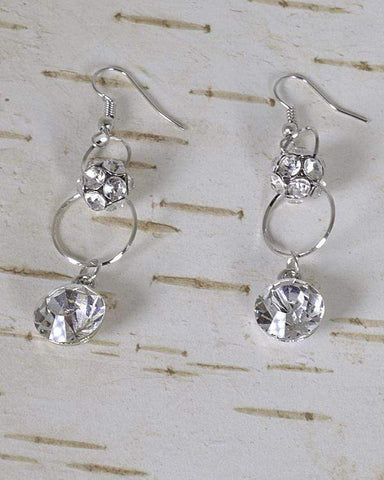 My Bargain Boutique Silver Stone and Crystal Studded Fishhook Drop Earrings