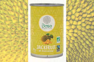 Jack Fruit Base