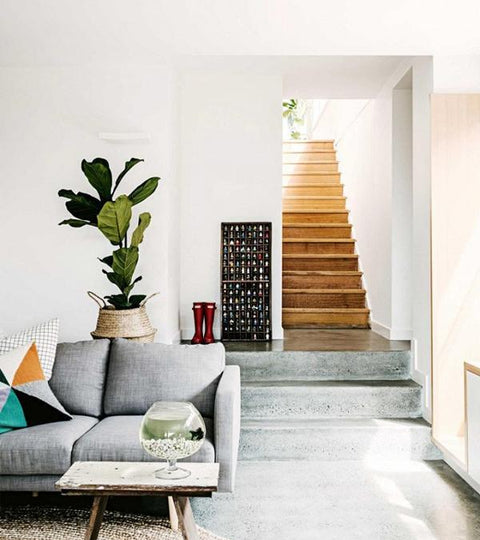 Interior Inspiration — Plants are the new Black