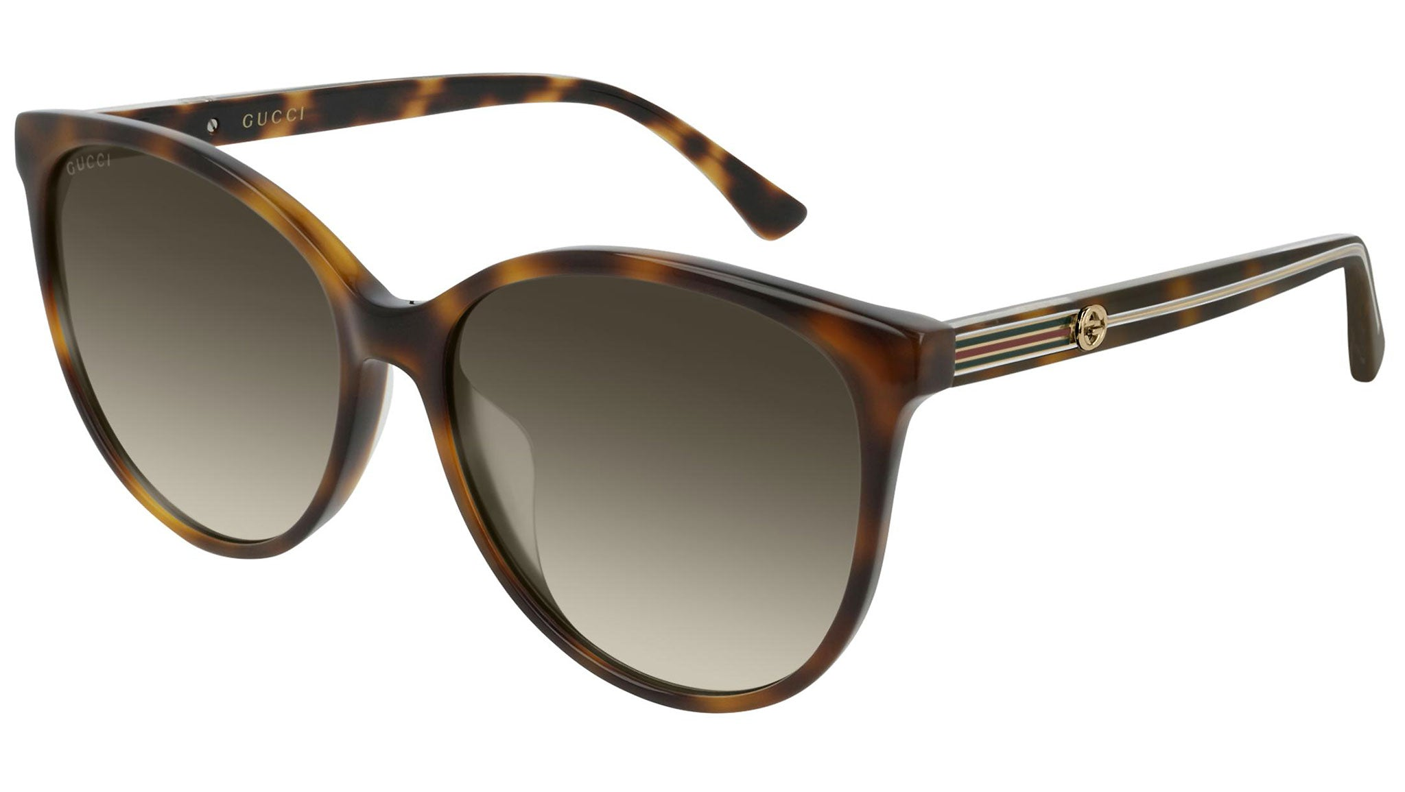 GG0377SK shiny havana and brown