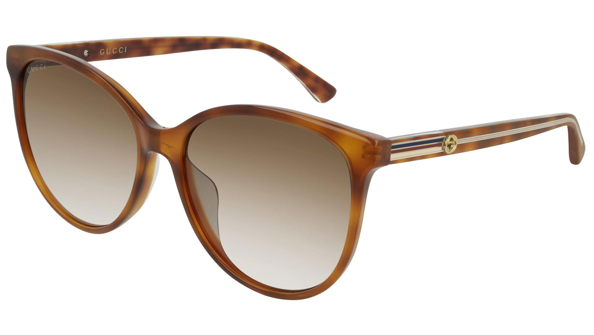 GG0377SK light havana and brown