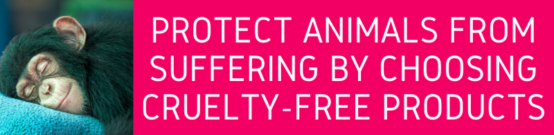 Protect Animals From Suffering By Choosing Cruelty Free Products