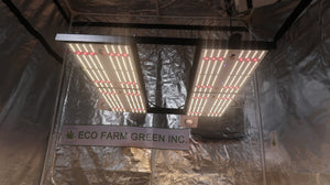 ECO Farm 240W/480W V3 Samsung 301H Chips 660nm UV IR MeanWell Driver Movable Quantum Board Envio Grátis