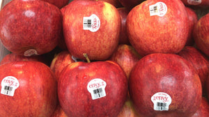 New Zealand Envy Apples