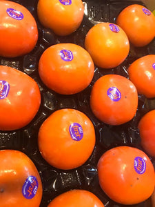 New Zealand Persimmon (Pack of 3)