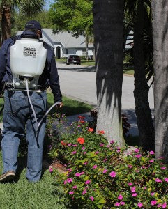 Chapin Backpack sprayer - turf & agriculture