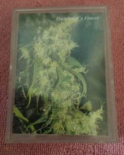 Load image into Gallery viewer, 1994 INLINE HEMP TRADING CARDS SERIES 1 UNOPENED BOX - RARE