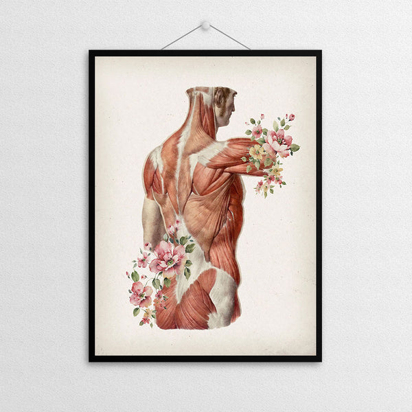Corps anatomie X - Floral