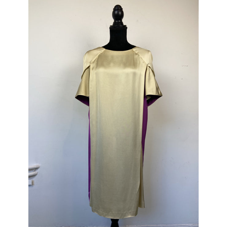 Golden Fuschia Viscose Dress
