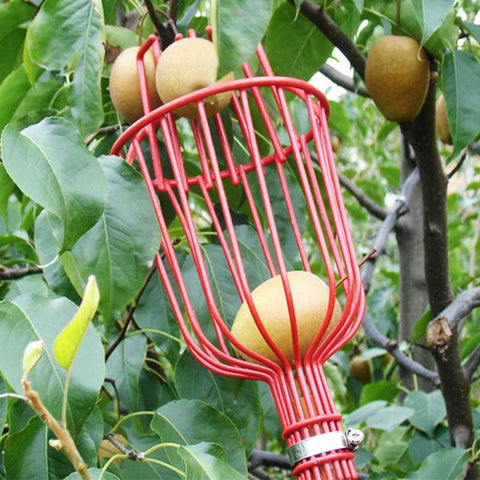 Aluminum Deep Basket Fruit picker
