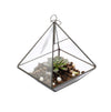 Diamond Shape Brass Edge Hanging Terrarium