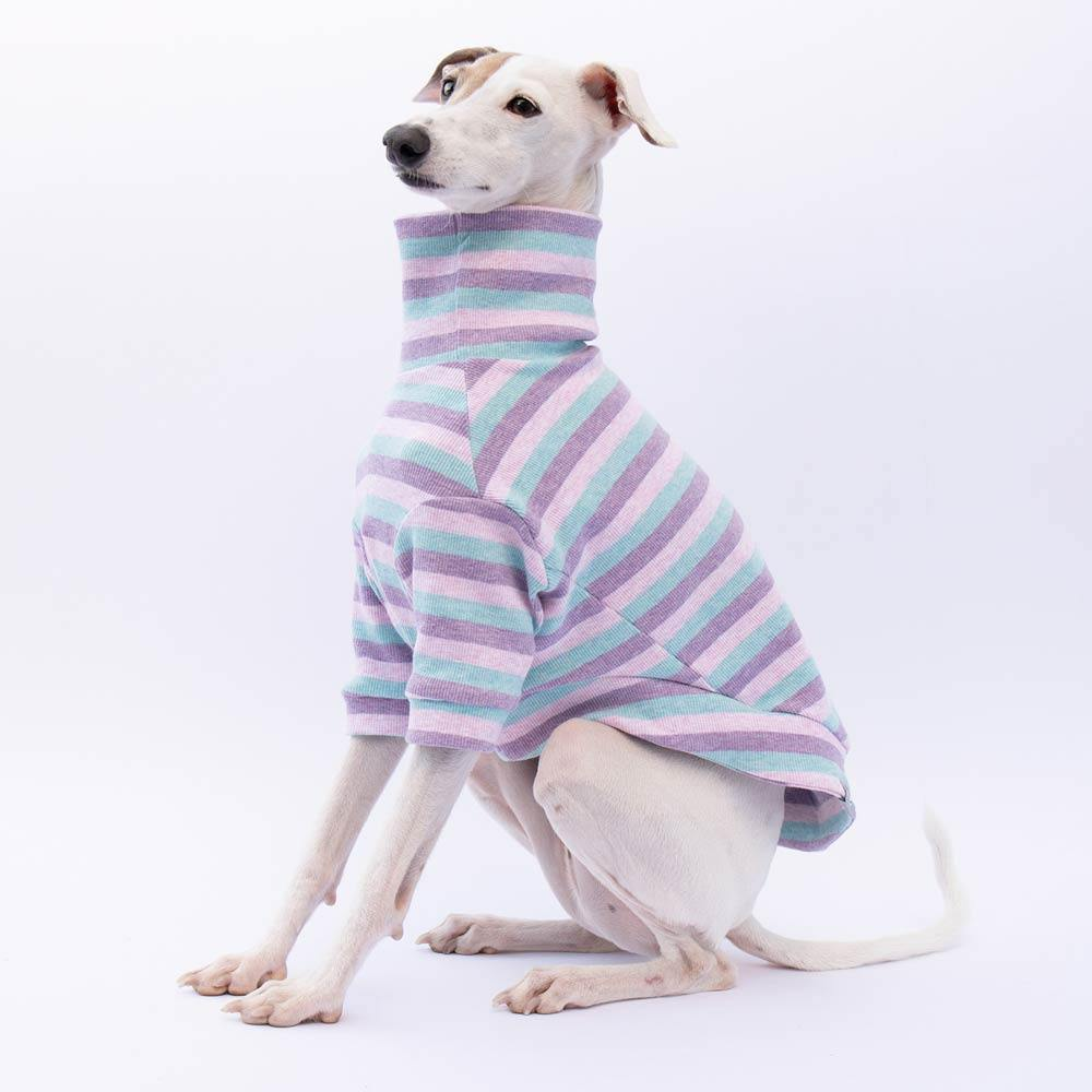 Turtleneck Sweater in Candy Stripe - IGGY DOGWEAR