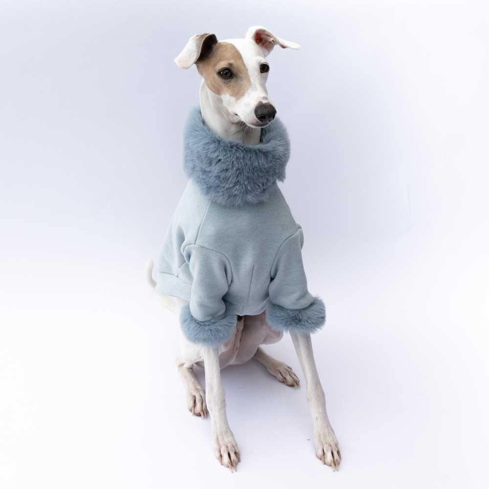 Luxe Fur Italian Greyhound Sweater in Blue - IGGY DOGWEAR