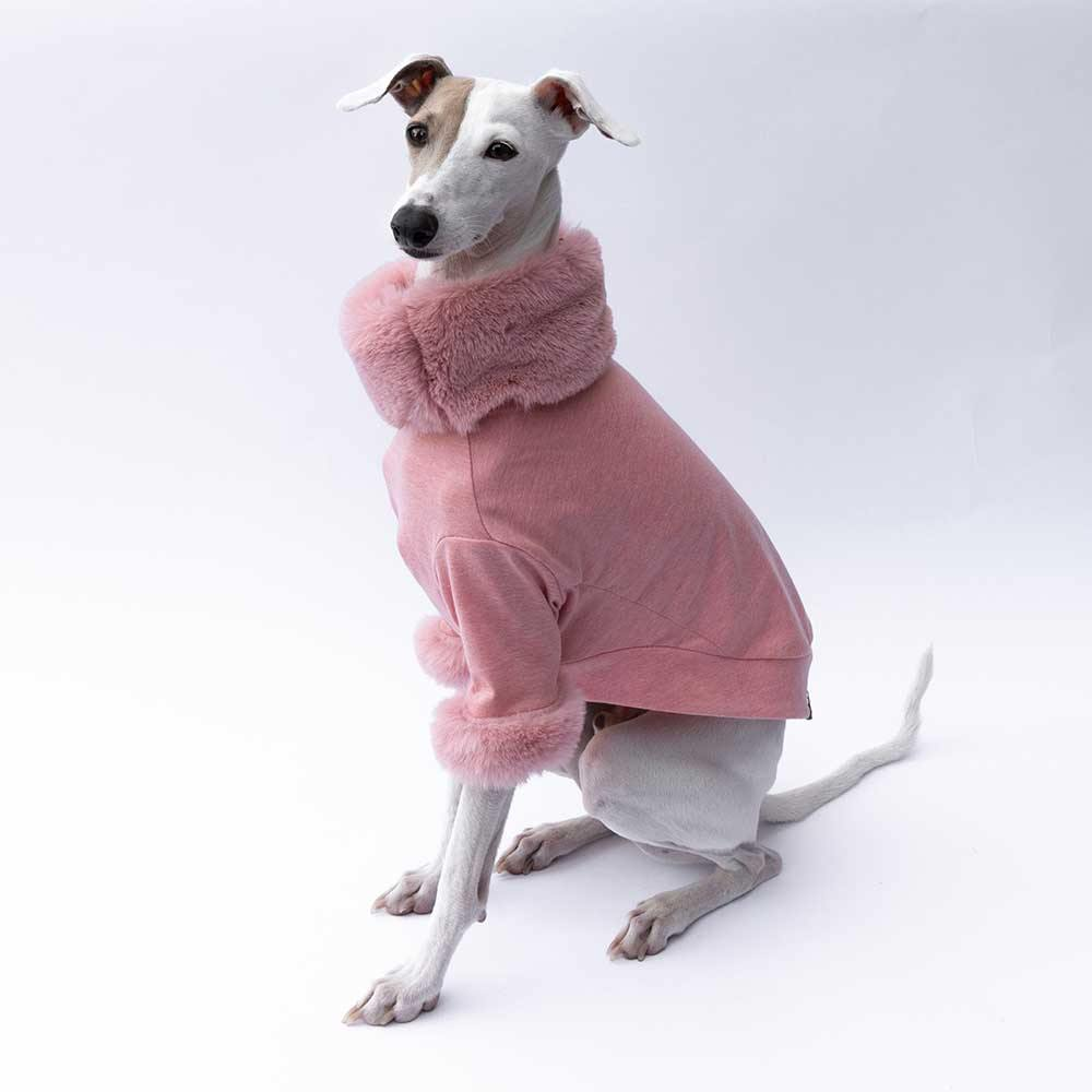 Luxe Fur Italian Greyhound Sweater in Pink - IGGY DOGWEAR