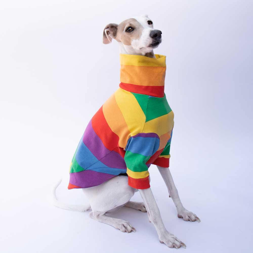 Turtleneck Sweater in Rainbow Pride Stripe - IGGY DOGWEAR