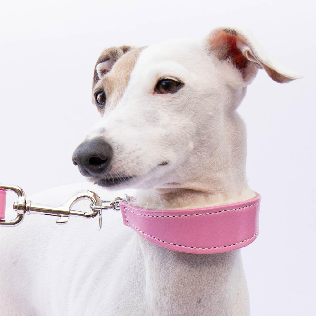 Small Pink Leather Wool-lined Martingale Collar for Italian Greyhounds - IGGY DOGWEAR