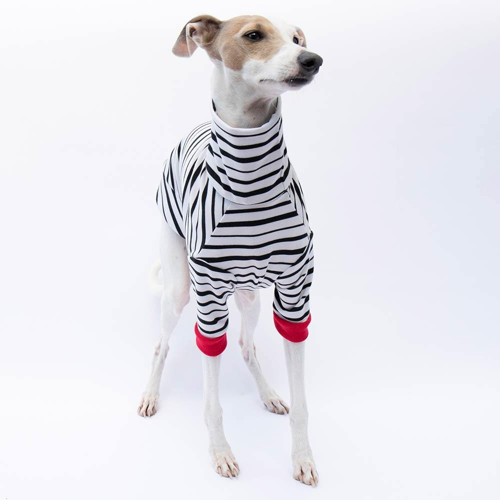 Turtleneck Sweater in Sailor Stripe - IGGY DOGWEAR