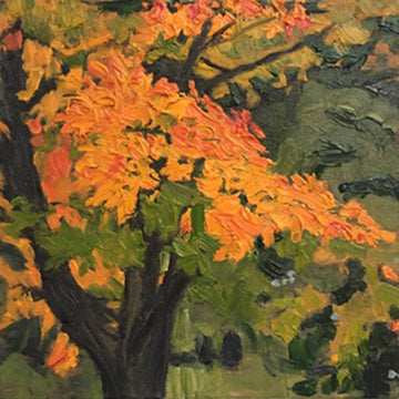 "Lisa Baldwin ""Maple Tree In Autumn"""