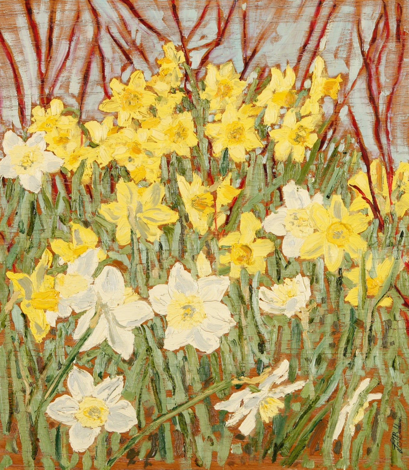 Daffodils and Dogwood