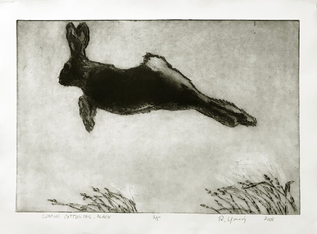 Leaping Cottontail (black)