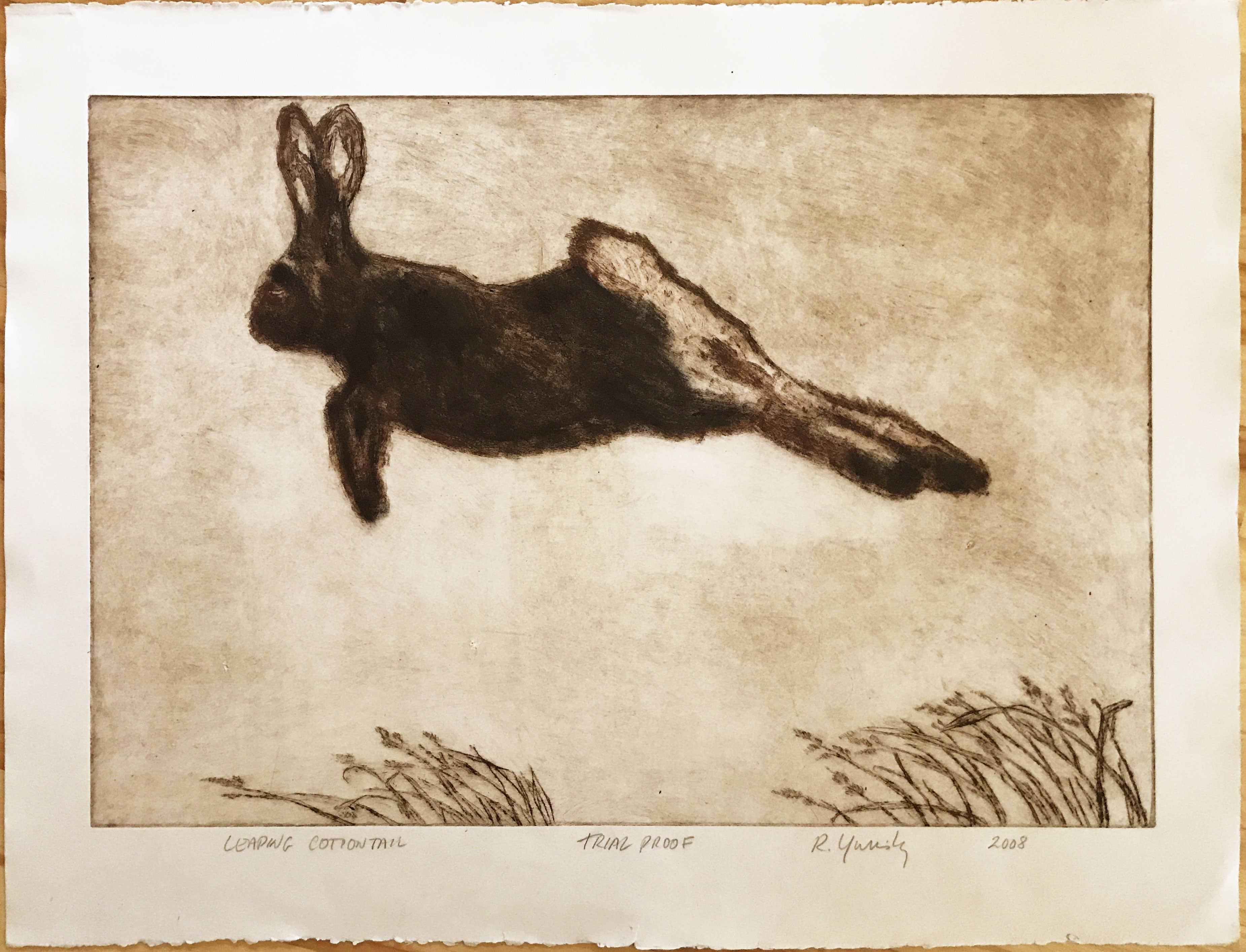 Leaping Cottontail (Brown and Black)