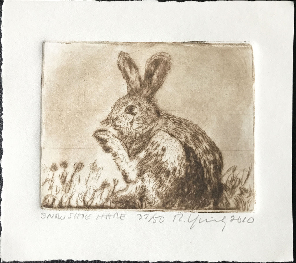 "Russell Yuristy ""Snowshoe Hare"""