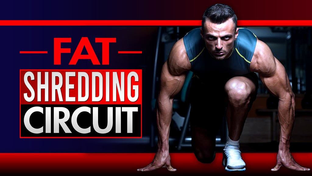Fat Shredding Plyometric Cardio Circuit For Beginners