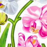 Aromatic Flowers - Wall Decals Stickers Appliques Home Decor