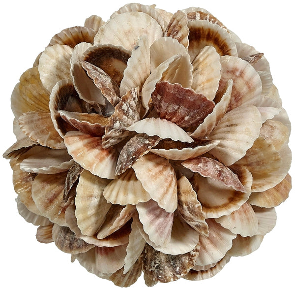 "Decorative Mixed Pecten Shells Orb Ball 6"", Nautical Decor Table Top Centerpiece"