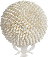 "Decorative White Bubble Shells Orb 8"", Nautical Decor Table Top Centerpiece"