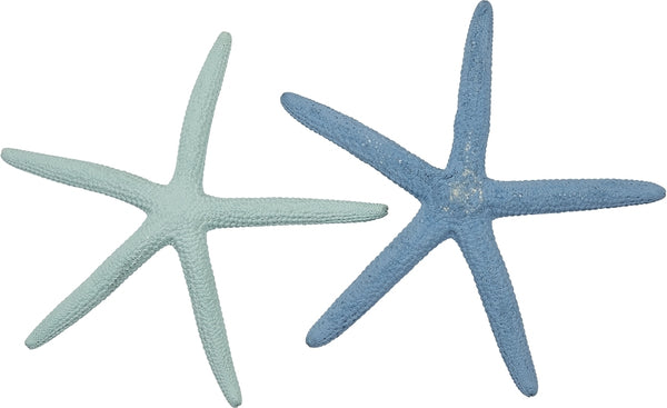 "10 Small Dyed Pastel Finger (pencil) Natural Starfish 2-4""  Green & Bue (set Of 10)"