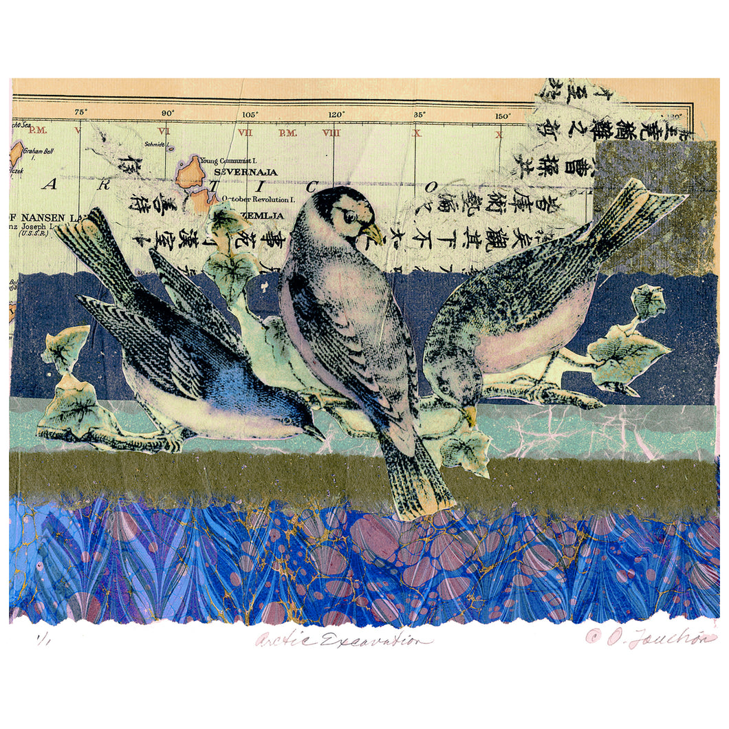Arctic Excavation, fantasy collage with two songbirds and map fragments, for sale by Ouida Touchon