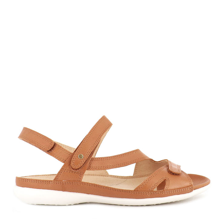 BELTA W - DARK TAN LEATHER