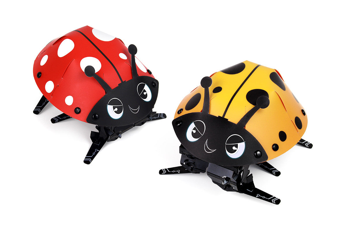 Spot the Ladybug 2-Pack Bundle