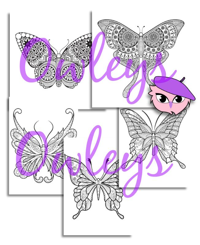 digital printable coloring pages animals 070