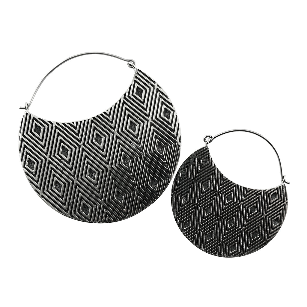 Silver Allotrope Titanium Earrings