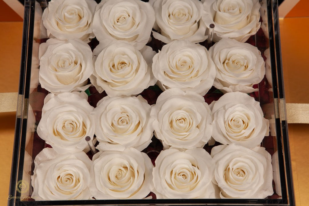 EMPRESS FLORA BIG 16 WHITE ROSES IN AN ACRYLIC BOX