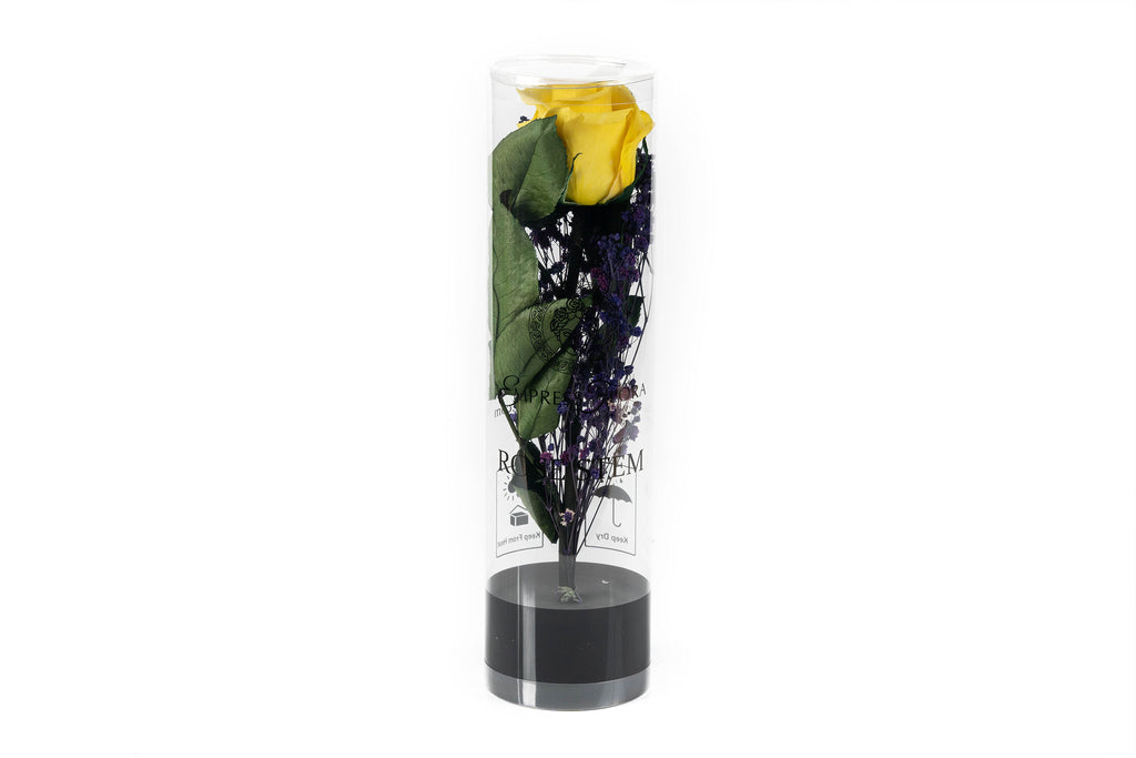 Bright Yellow and Baby Breath gift bouquet / Preserved rose / Dry flower