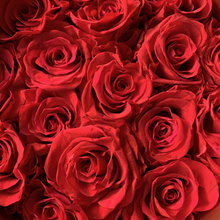 Load image into Gallery viewer, Red Roses