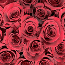 Load image into Gallery viewer, burgundy roses