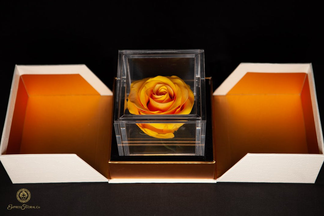 Empress Flora Single Honey Yellow Rose in an Acrylic Box Personalized Gift