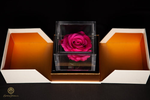 Empress Flora Single Hot Pink Rose in an Acrylic Box Personalized Gift