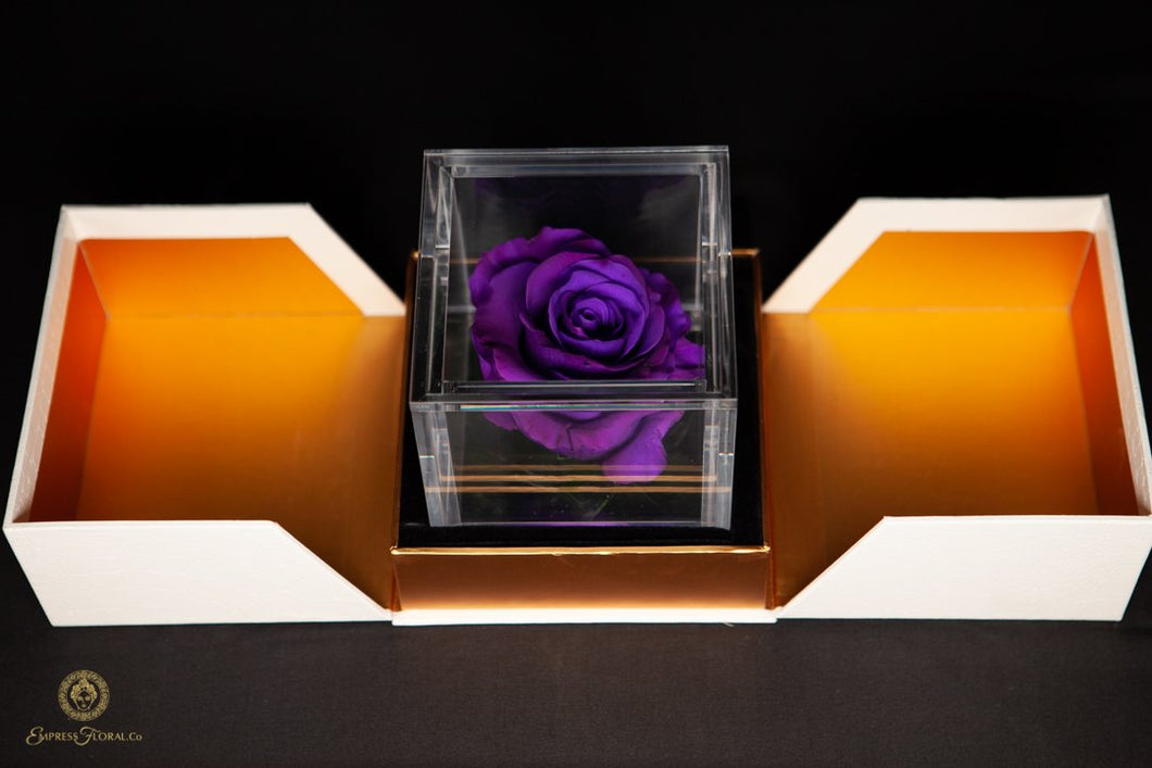 Violet Preserved Rose in removable luxury acrylic box