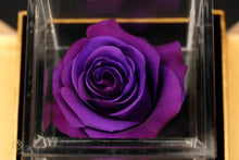 Load image into Gallery viewer, Violet Preserved Rose in removable luxury acrylic box