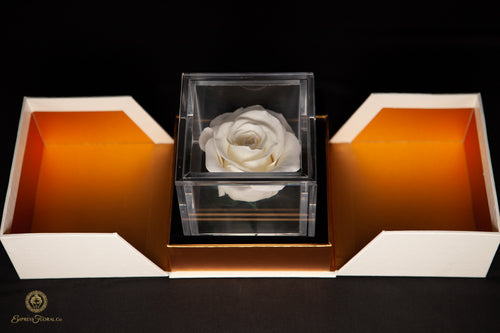 Ivory White Single Rose in a Box