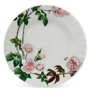 イングリッシュローズ ティープレート - English Rose 20cm Tea Plate - david-austin-roses-japan