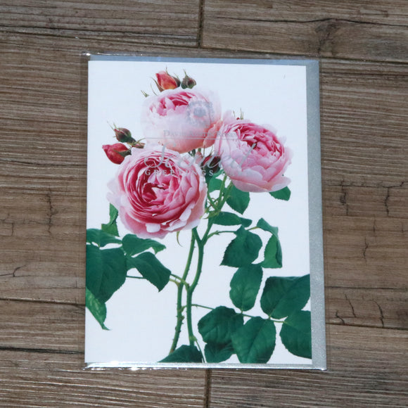 Scented Card Blank (Scepter'd Isle)