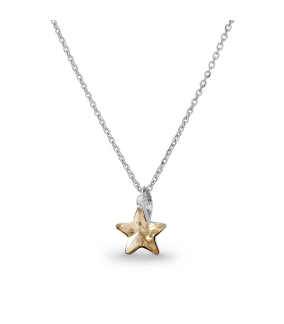 Collar Star Golden Shadow