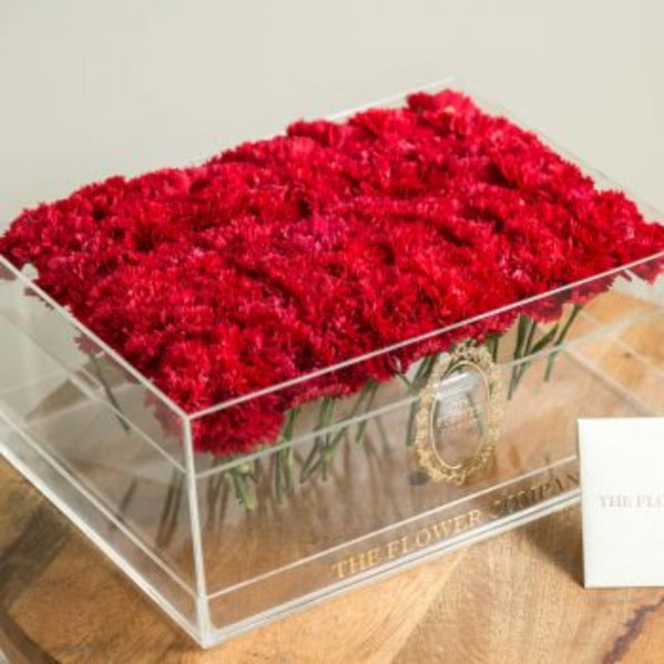 Carnations - Crystal Grande